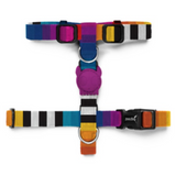 Zee Dog Prisma Strap Harness