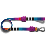 Zee Dog Prisma Leash