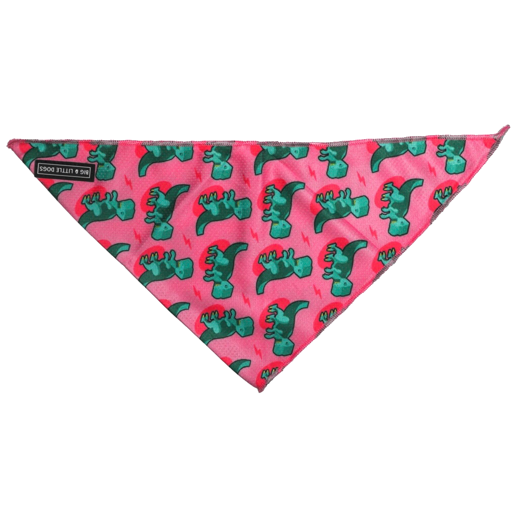 Big & Little Dogs Bandana Princess-asaurus
