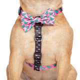 Big & Little Dogs Harness Strap Princess-asurus