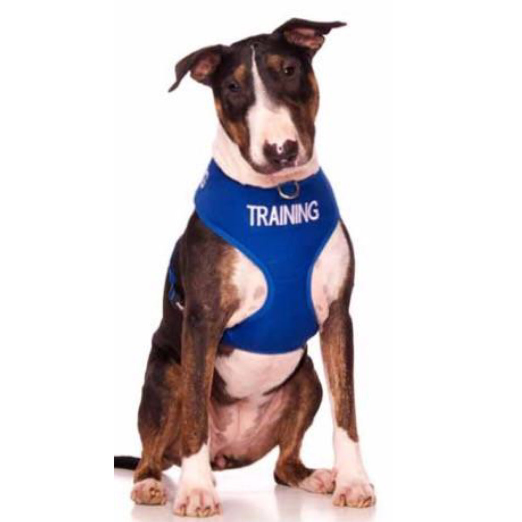 Friendly Dog Collars Training Vest Harness