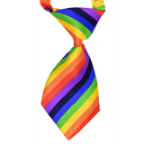 Dog Bless You Neck Tie Rainbow