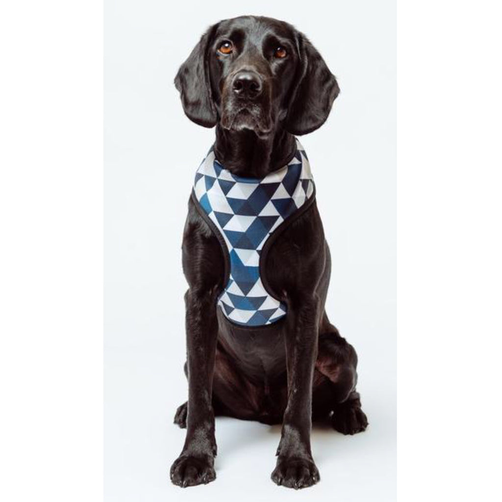 Mog & Bone Neoprene Diamond Print Harness