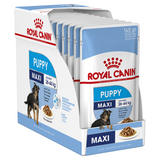 Royal Canin Maxi Puppy 40g x 10 Tray
