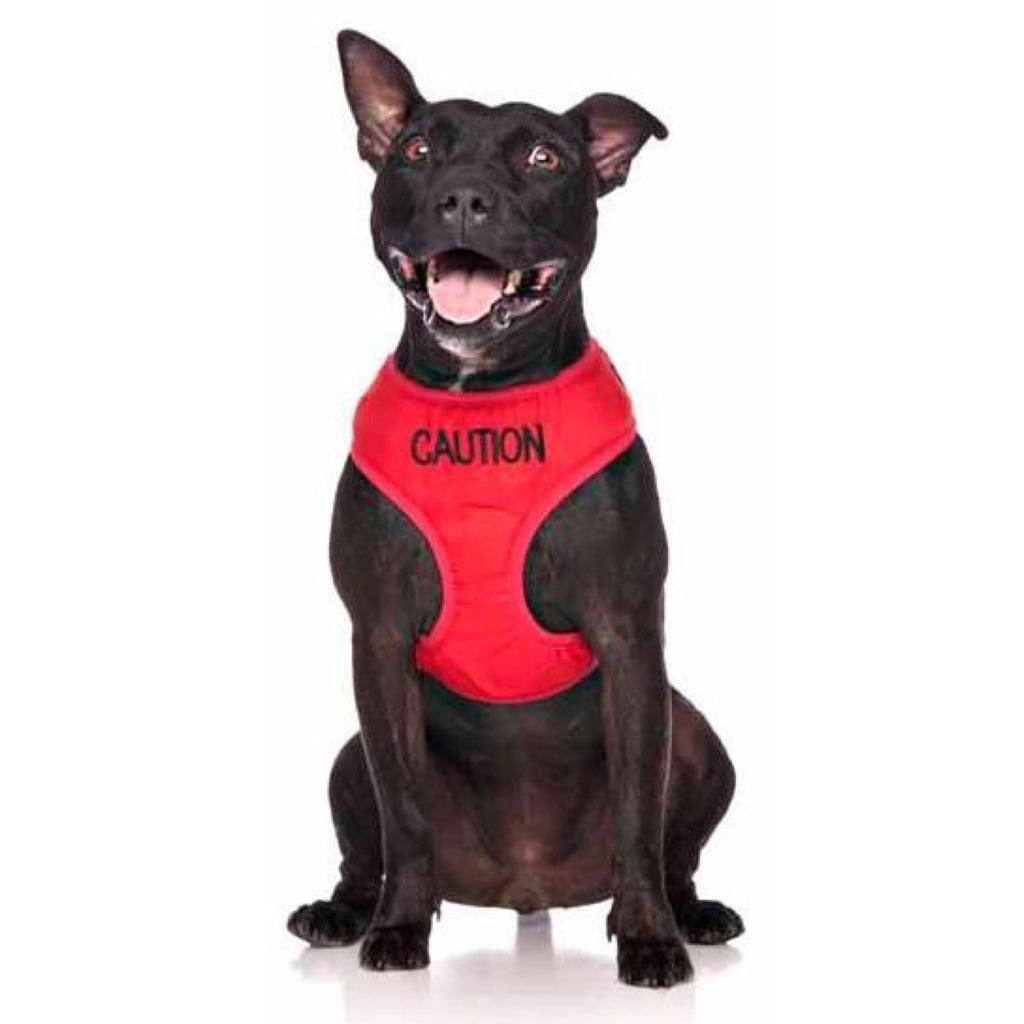 Friendly Dog Collars Caution Vest Harness