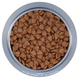 Royal Canin Mini Puppy Kibble