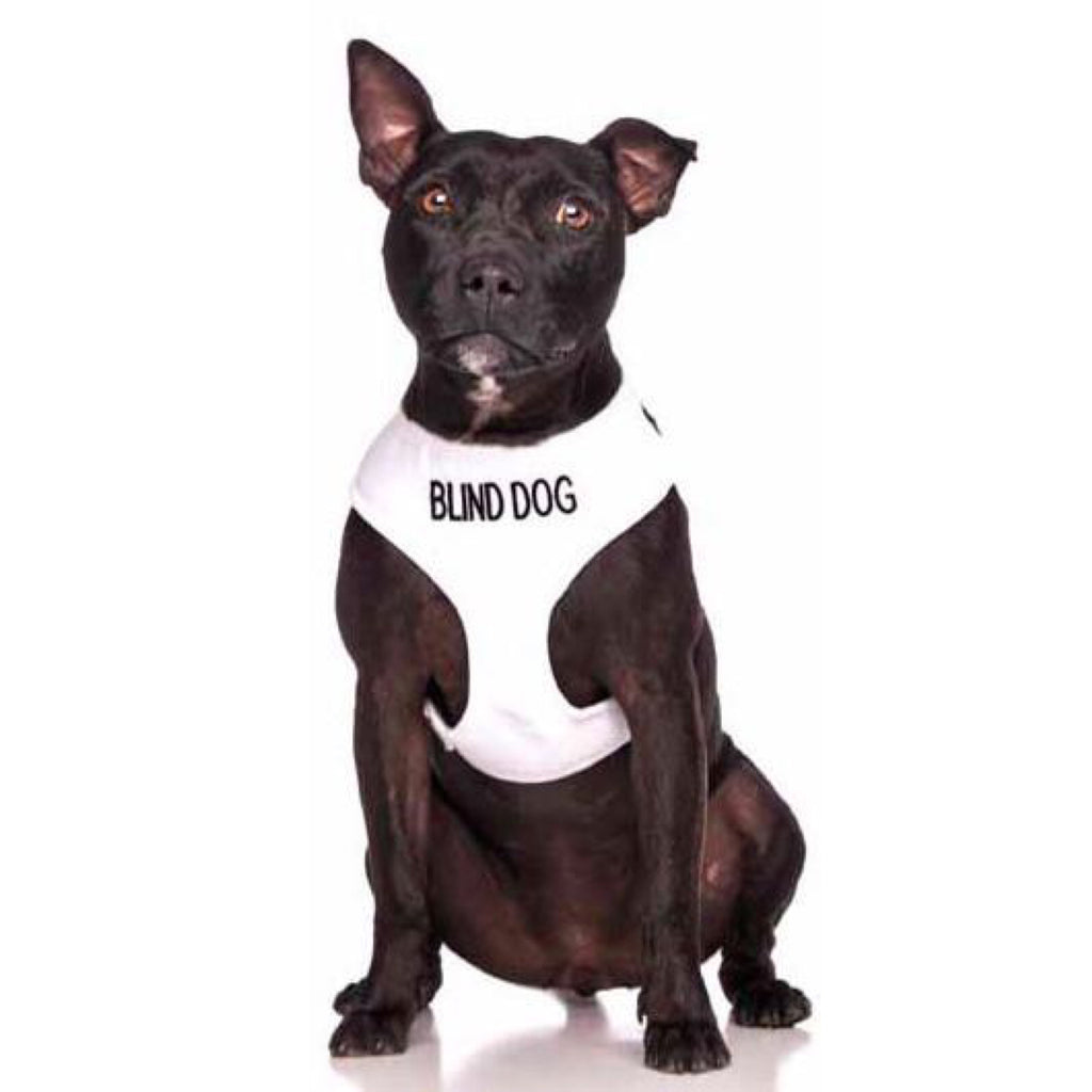 Friendly Dog Collars Blind Dog Vest Harness
