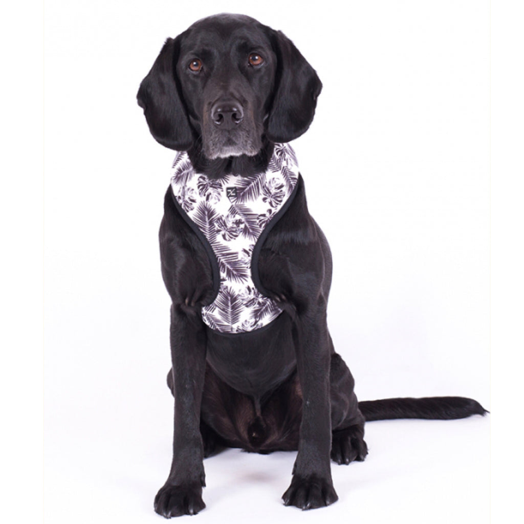 Dog Harness Mog & Bone Tropical Leaf Black