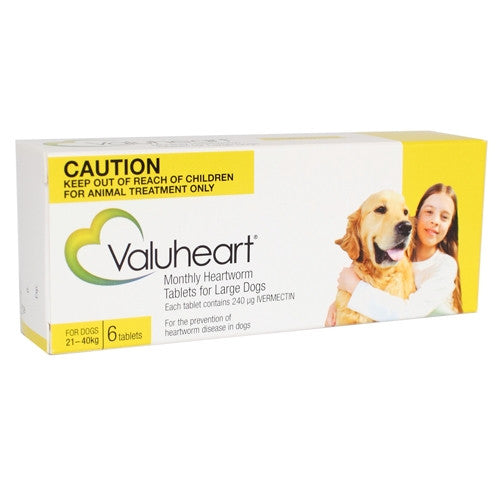 Valuheart Yellow Large 21-40kg
