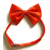 Dog Bless You Bow Tie Red S-M