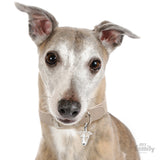 My Family Friends Greyhound ID Tag Charm Model
