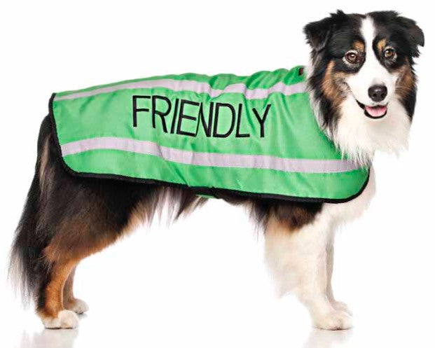 Friendly Dog Collars Coat Friendly