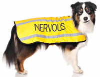 Friendly Dog Collars Nervous Coat | All Things Canine