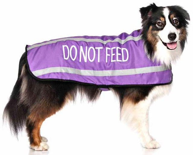 Friendly Dog Collars Coat Do Not Feed