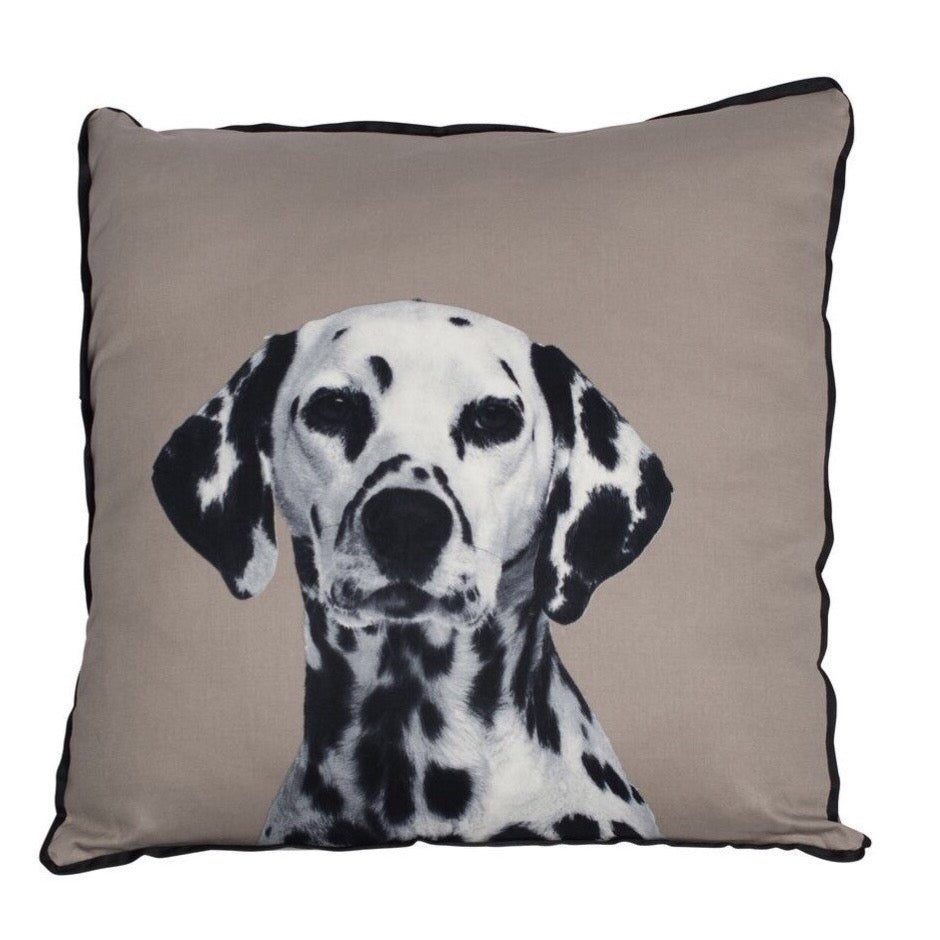 Mog & Bone Dalmatian Cushion