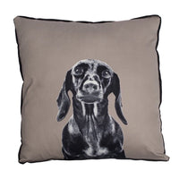 Mog & Bone Dachshund Cushion
