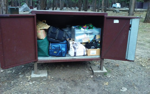 Bear Box Yosemite