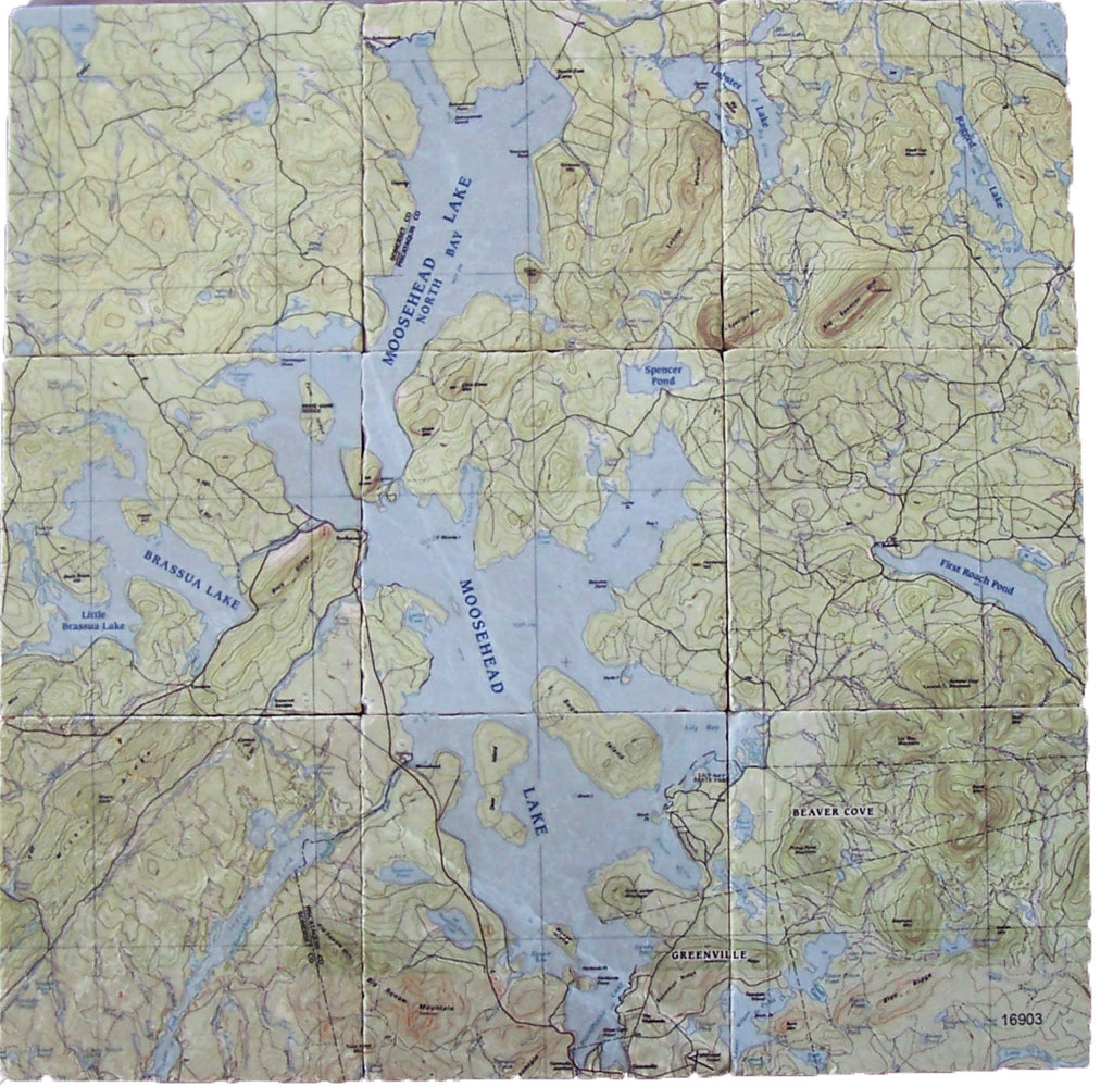 Moosehead Lake Topo Map on Botticino Tumbled Marble Tile - The Condimented Pantry