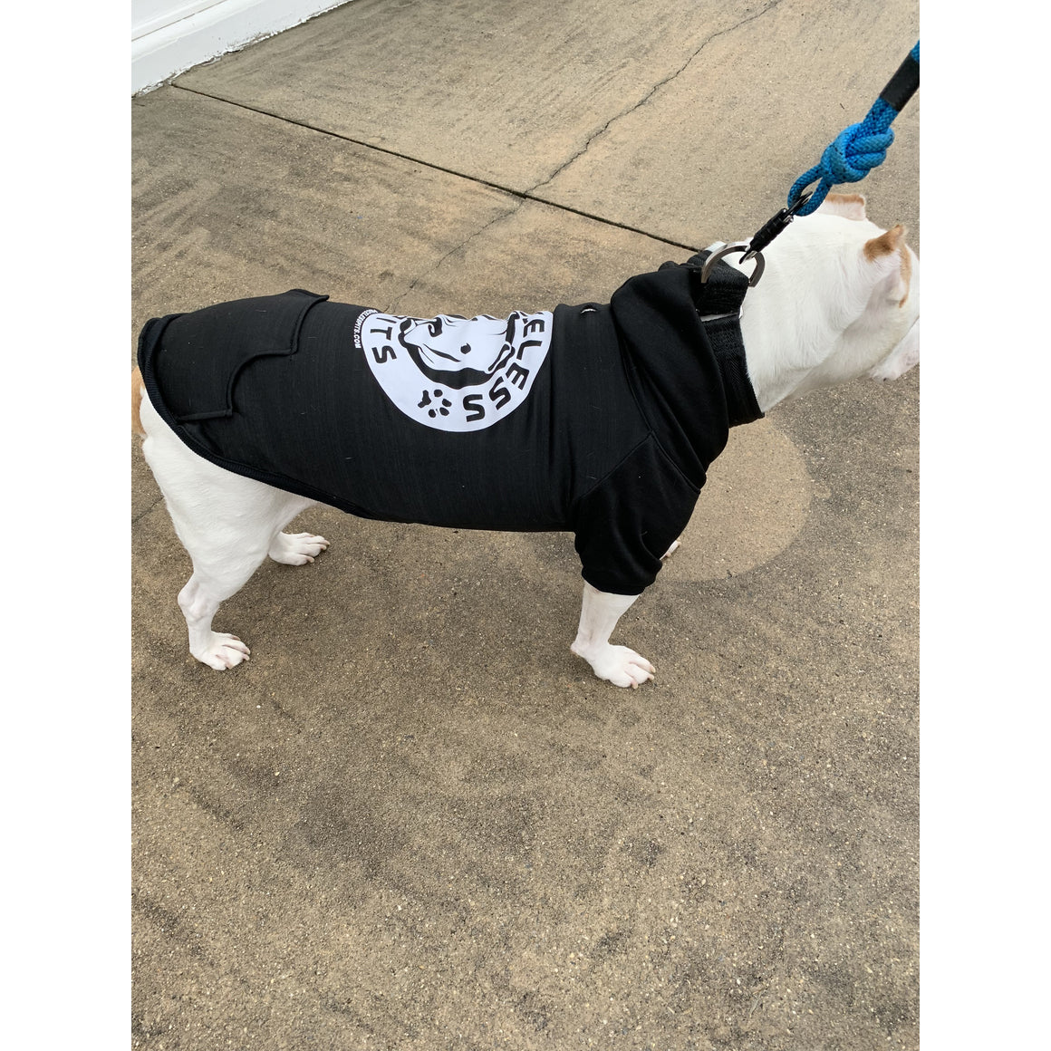 """Priceless Pits Logo"" Black Pitbull Dog Hoodie"