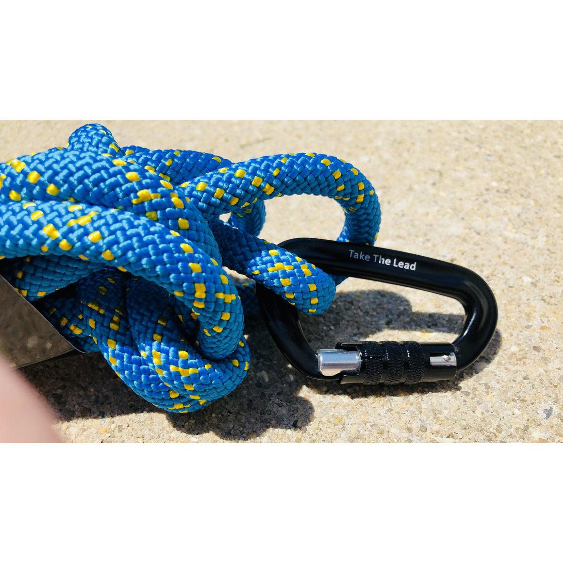 """Indigo"" Carabiner Rope Dog Leash"