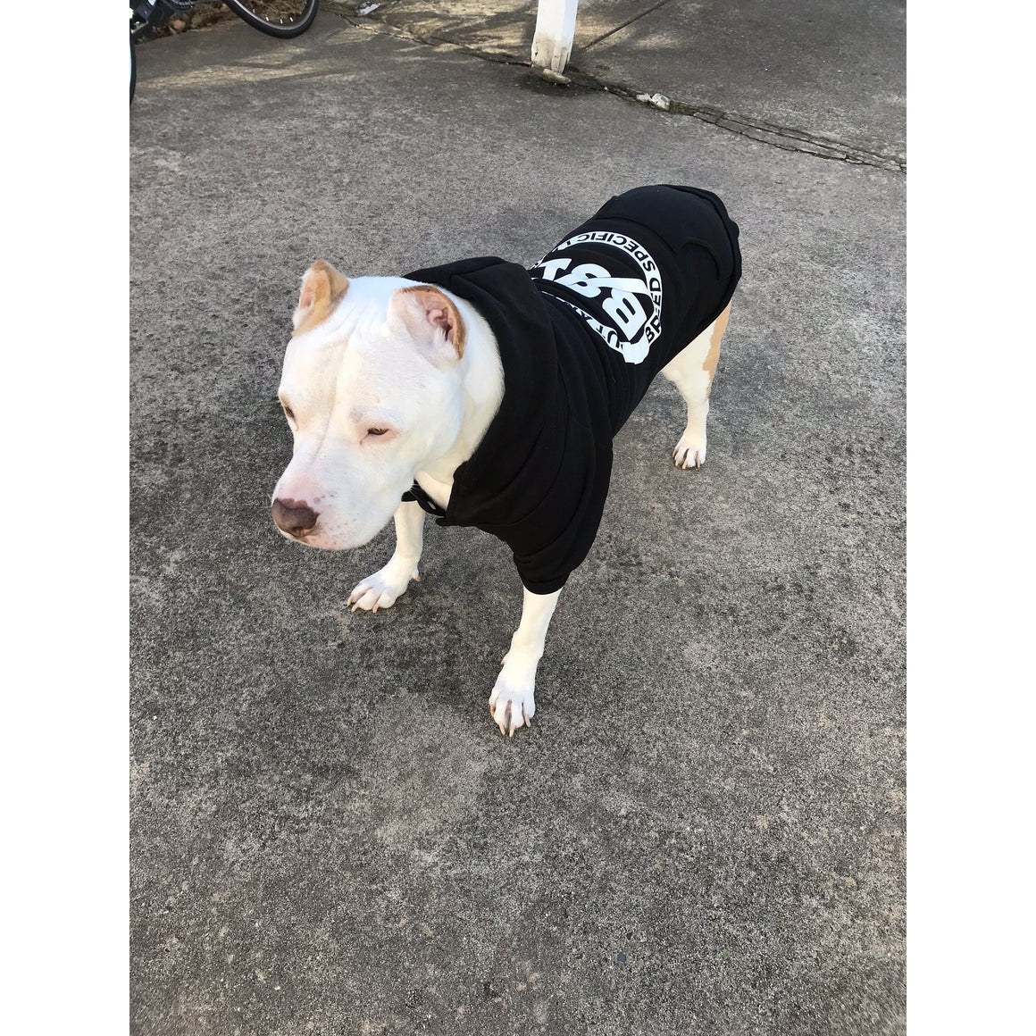 No BSL Pitbull shirt