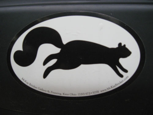oval squirrel tile kent ohio