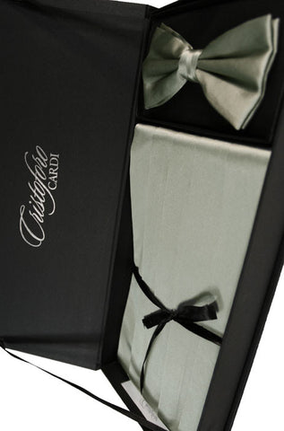 Platinum Noble Silk Bow Tie and Cummerbund Set by Cristoforo Cardi