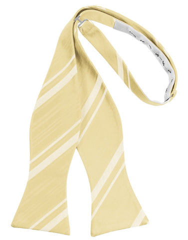 Banana Striped Satin Self-Tie Formal Bow Tie