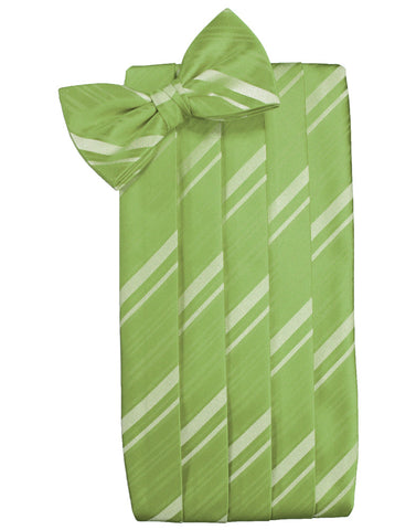 Clover Green Striped Satin Cummerbund Set
