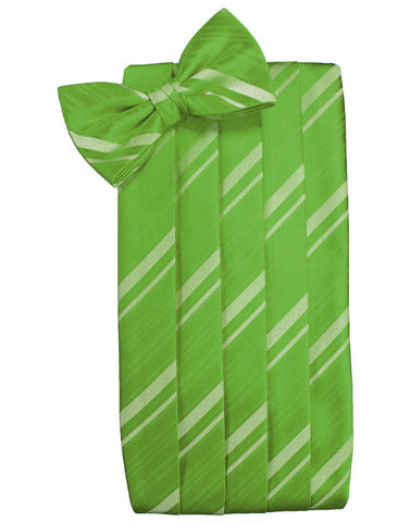 Kelly Green Striped Satin Cummerbund Set