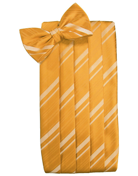 Mandarin Striped Satin Cummerbund Set