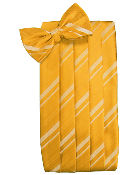 Tangerine Striped Satin Cummerbund Set