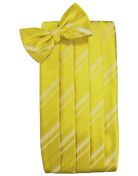 Willow Striped Satin Cummerbund Set