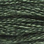Corinne Lapierre DMC thread skein Dark Fern Green 520