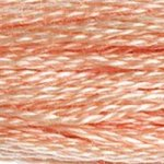 Corinne Lapierre DMC thread skein Light Peach 754