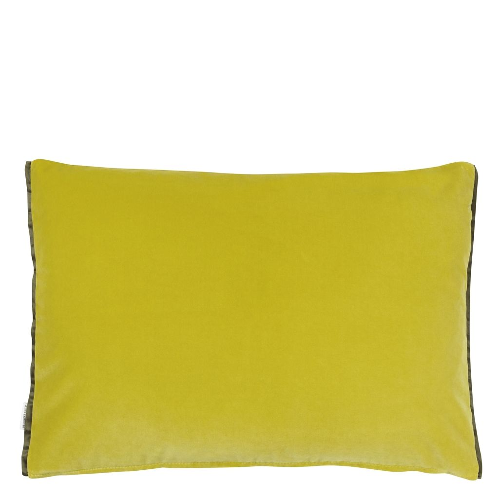 Cassia Alchemilla Decorative Pillow