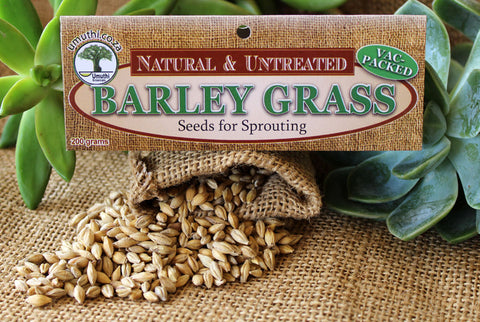 BARLEY GRASS SEEDS