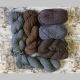 Classic Elite Yarns Six Pack of Yarn, Multiple Colorways Available