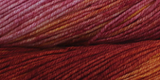 Malabrigo Yarn - Arroyo Yarn
