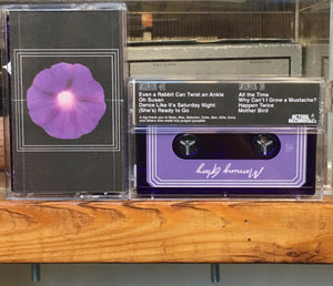 Mark Whalen - Morning Glory - New Cassette 2018 Purple Tape - Detroit Indie Pop