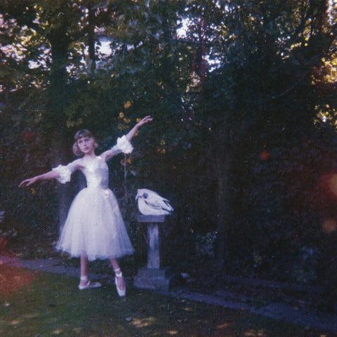 Wolf Alice ‎– Visions Of A Life - New 2 Lp Record 2017 USA 180 gram Vinyl & Download - Alternative Rock / Indie Rock