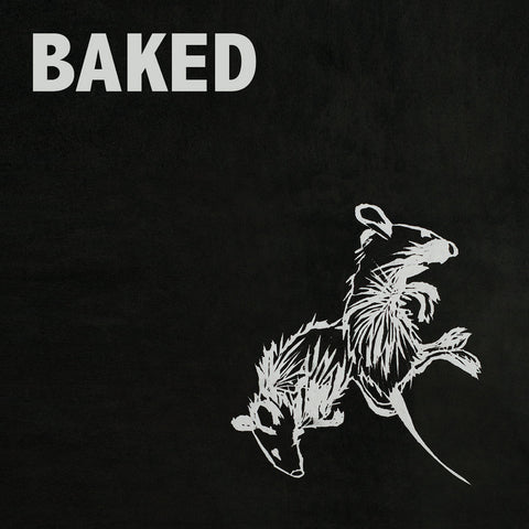 Baked - Farnham - New Vinyl Record 2017 Exploding in Sound LP w/ Insert Sheet - Psychedelic / Shoegaze (feat. members of Titus Andronicus + Ovlov)