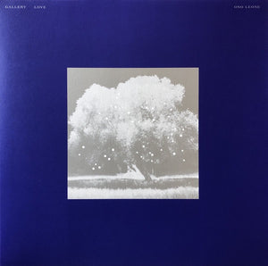 Oso Leone ‎– Gallery Love - New Vinyl LP Record 2019 - Electronic / Ambient / Downtempo