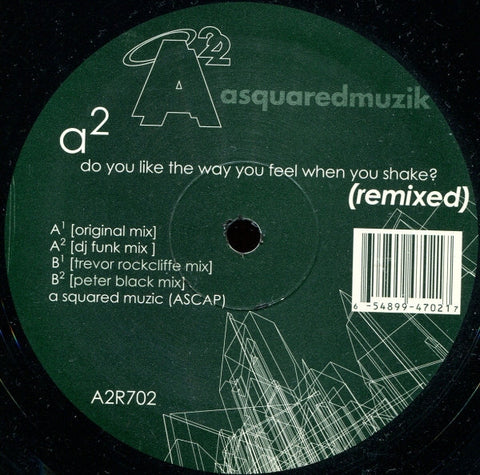 "A2 - Do You Like The Way You Feel When You Shake? (Remixed) Mint- - 12"" Single 2002 A Squared Muzik USA - Chicago Techno"