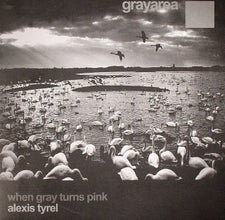 "Alexis Tyrel ‎– When Gray Turns Pink - Mint 12"" Single EP (Netherlands Import) 2007 - Techno Minimal"