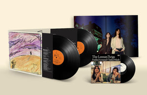 "The Lemon Twigs - Go To School - New 2 Lp Record 2018 4AD USA  Vinyl & Bonus 7""Single, Download & Poster - Glam / Rock"