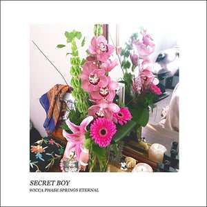 Wicca Phase Springs Eternal ‎– Secret Boy - New Lp 2018 Run For Cover USA Vinyl - Rock / Trap / Emo