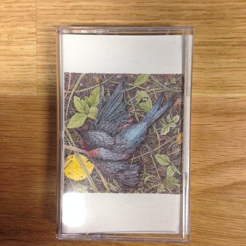 Caddywhompus - Feathering A Nest - New Cassette - 2014 Community Records - Black and White Tape - Pop / Rock