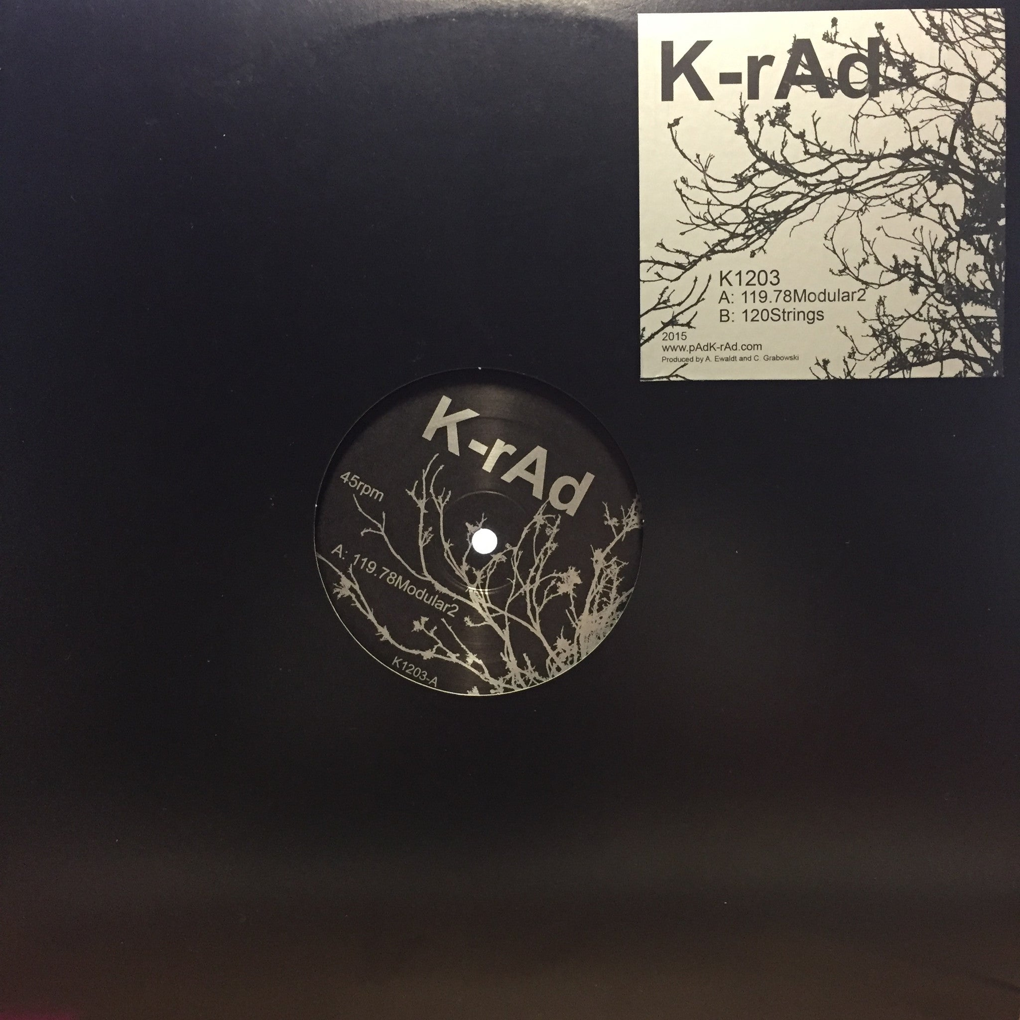 "K-rAd - 119.78Modular2 / 120Strings - New 2015 Vinyl 12"" Single USA - Chicago House/Techno"