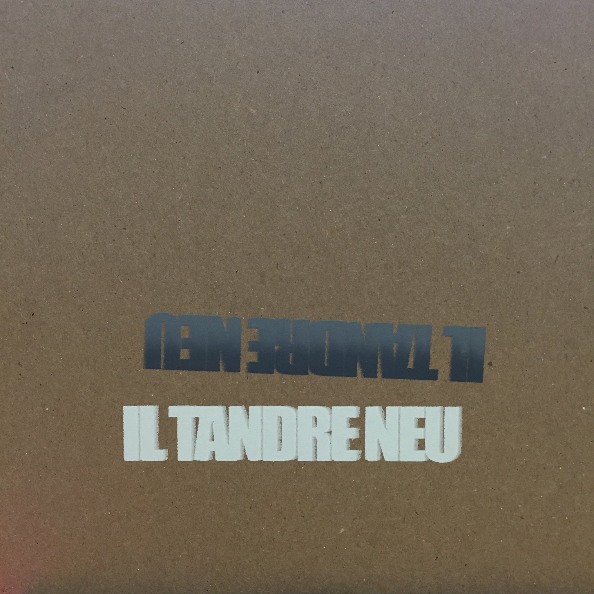 "Il Tandre Neu ‎– Nikola - New 7"" Single Record 2014 USA Private Chicago Vinyl, Insert & download - Shoegaze / Indie Rock"